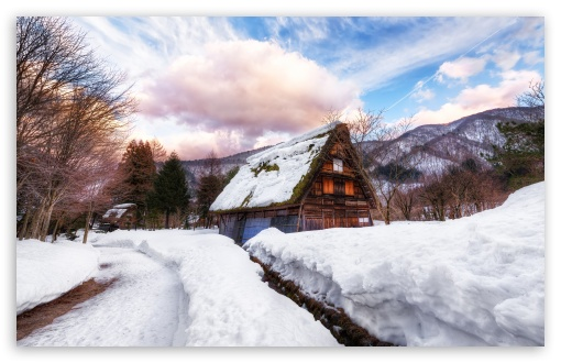 A village in Japan during winters