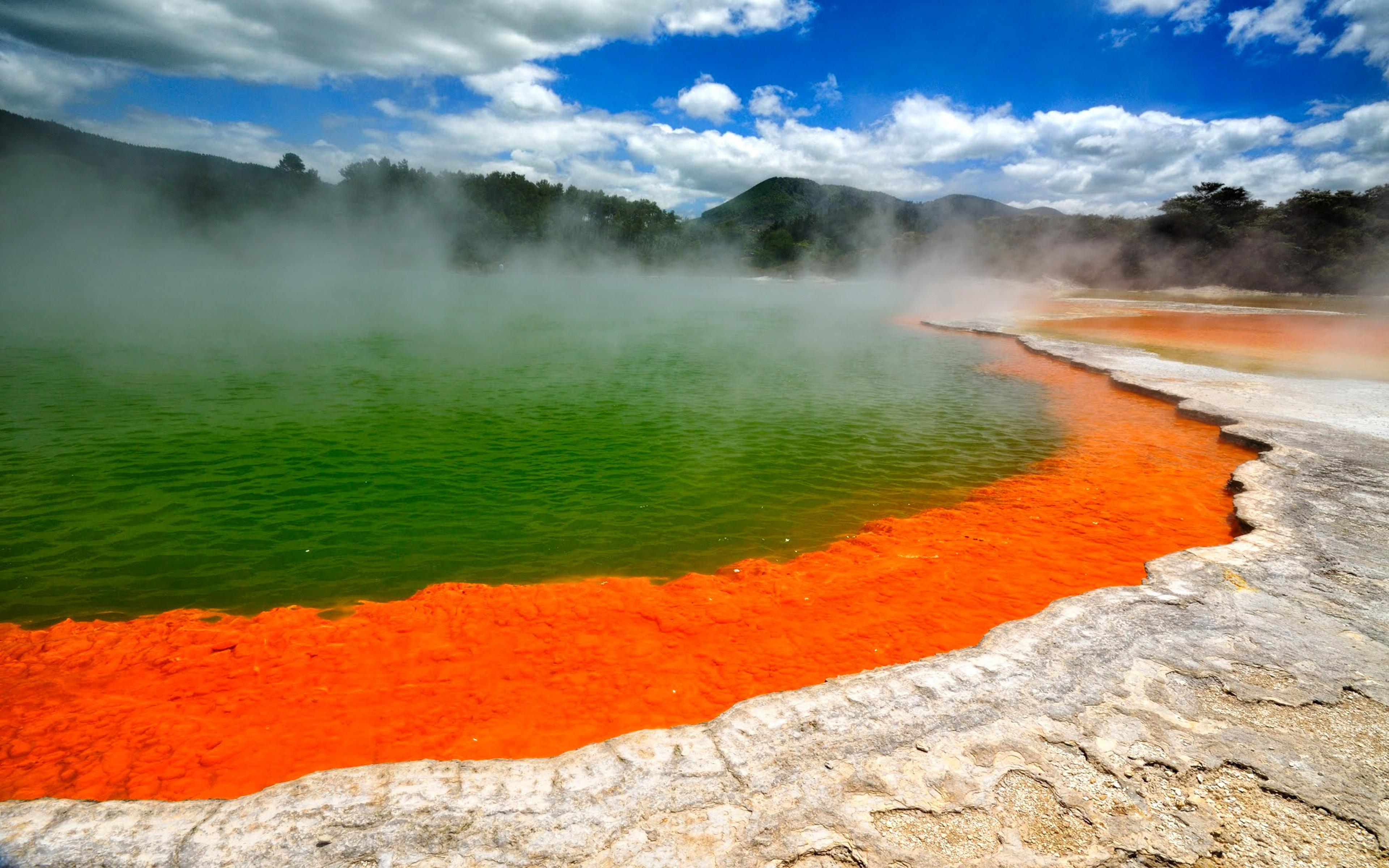 Geyser Lake, Rotorua